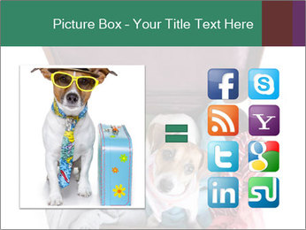 Cute dog sits in a suitcase for traveling with brightly PowerPoint Templates - Slide 21