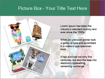 Cute dog sits in a suitcase for traveling with brightly PowerPoint Templates - Slide 23