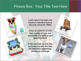Cute dog sits in a suitcase for traveling with brightly PowerPoint Templates - Slide 24