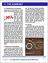 0000088281 Word Template - Page 3