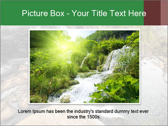 National Park, Sri Lanka PowerPoint Template - Slide 15
