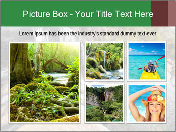 National Park, Sri Lanka PowerPoint Template - Slide 19