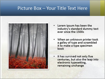 Beautiful landscape with a isolated tree PowerPoint Template - Slide 13