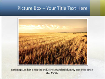 Beautiful landscape with a isolated tree PowerPoint Templates - Slide 15