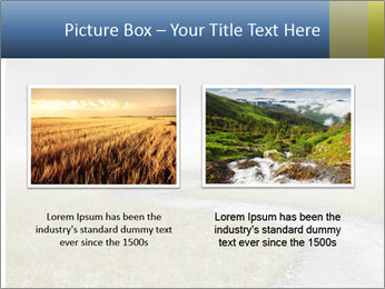 Beautiful landscape with a isolated tree PowerPoint Templates - Slide 18