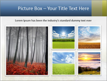 Beautiful landscape with a isolated tree PowerPoint Templates - Slide 19