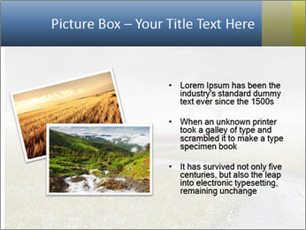 Beautiful landscape with a isolated tree PowerPoint Templates - Slide 20