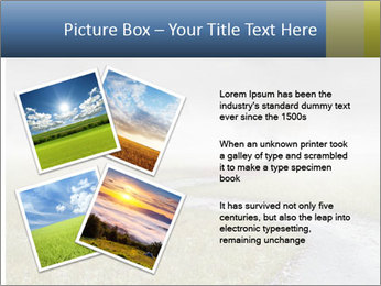 Beautiful landscape with a isolated tree PowerPoint Template - Slide 23
