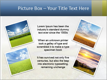 Beautiful landscape with a isolated tree PowerPoint Templates - Slide 24