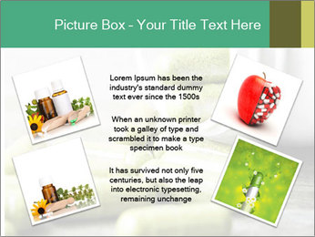 Herb capsule spilling PowerPoint Templates - Slide 24