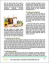 0000088288 Word Templates - Page 4
