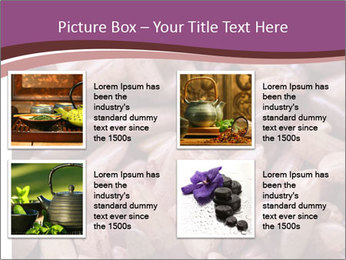 Monascus purpureus PowerPoint Templates - Slide 14