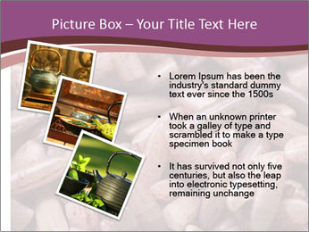 Monascus purpureus PowerPoint Templates - Slide 17