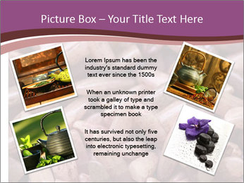 Monascus purpureus PowerPoint Templates - Slide 24