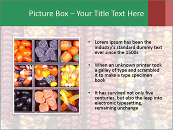 Indian colored corn PowerPoint Templates - Slide 13