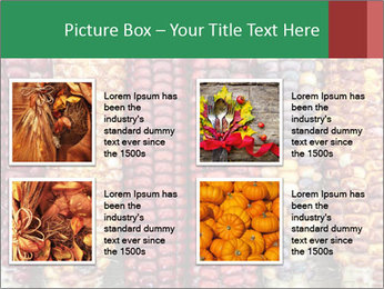 Indian colored corn PowerPoint Templates - Slide 14