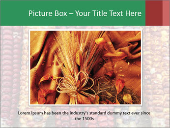 Indian colored corn PowerPoint Templates - Slide 16