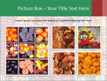 Indian colored corn PowerPoint Templates - Slide 19