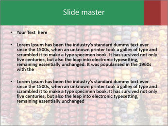 Indian colored corn PowerPoint Templates - Slide 2