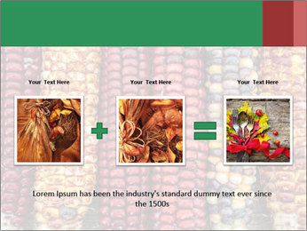 Indian colored corn PowerPoint Templates - Slide 22
