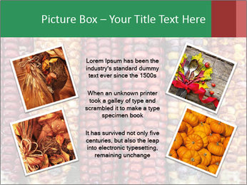 Indian colored corn PowerPoint Templates - Slide 24