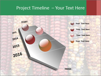 Indian colored corn PowerPoint Templates - Slide 26