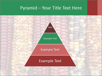 Indian colored corn PowerPoint Templates - Slide 30