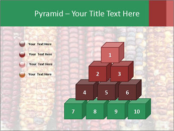 Indian colored corn PowerPoint Templates - Slide 31