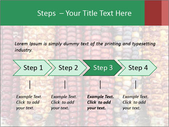 Indian colored corn PowerPoint Templates - Slide 4
