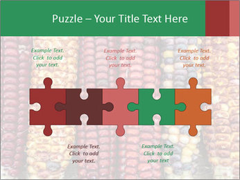 Indian colored corn PowerPoint Templates - Slide 41
