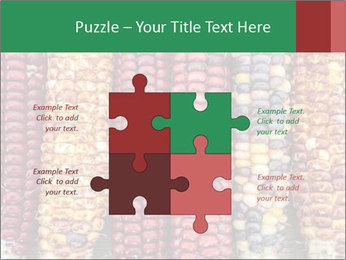Indian colored corn PowerPoint Templates - Slide 43