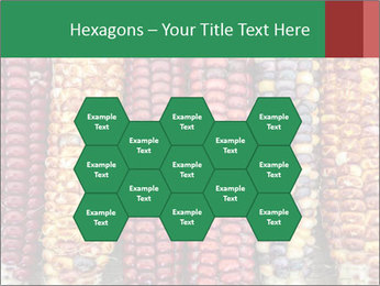 Indian colored corn PowerPoint Templates - Slide 44