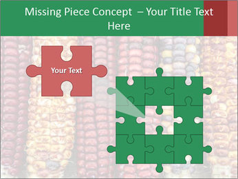 Indian colored corn PowerPoint Templates - Slide 45