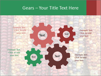 Indian colored corn PowerPoint Templates - Slide 47
