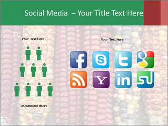 Indian colored corn PowerPoint Templates - Slide 5