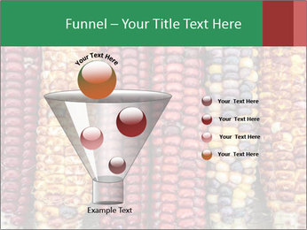 Indian colored corn PowerPoint Templates - Slide 63