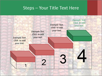 Indian colored corn PowerPoint Templates - Slide 64