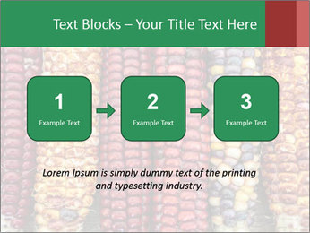 Indian colored corn PowerPoint Templates - Slide 71