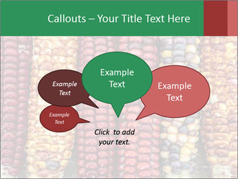 Indian colored corn PowerPoint Templates - Slide 73