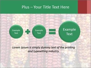 Indian colored corn PowerPoint Templates - Slide 75
