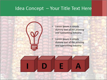 Indian colored corn PowerPoint Templates - Slide 80