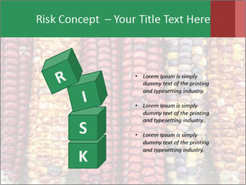 Indian colored corn PowerPoint Templates - Slide 81