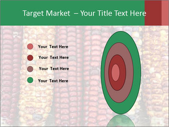 Indian colored corn PowerPoint Templates - Slide 84