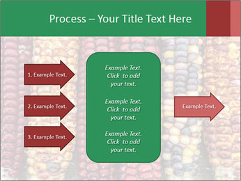 Indian colored corn PowerPoint Templates - Slide 85
