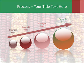 Indian colored corn PowerPoint Templates - Slide 87