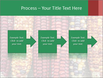 Indian colored corn PowerPoint Templates - Slide 88