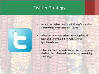 Indian colored corn PowerPoint Templates - Slide 9