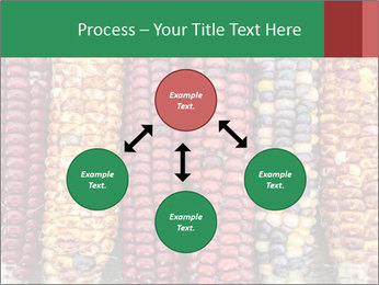 Indian colored corn PowerPoint Templates - Slide 91