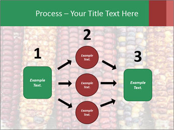 Indian colored corn PowerPoint Templates - Slide 92
