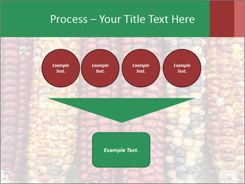 Indian colored corn PowerPoint Templates - Slide 93